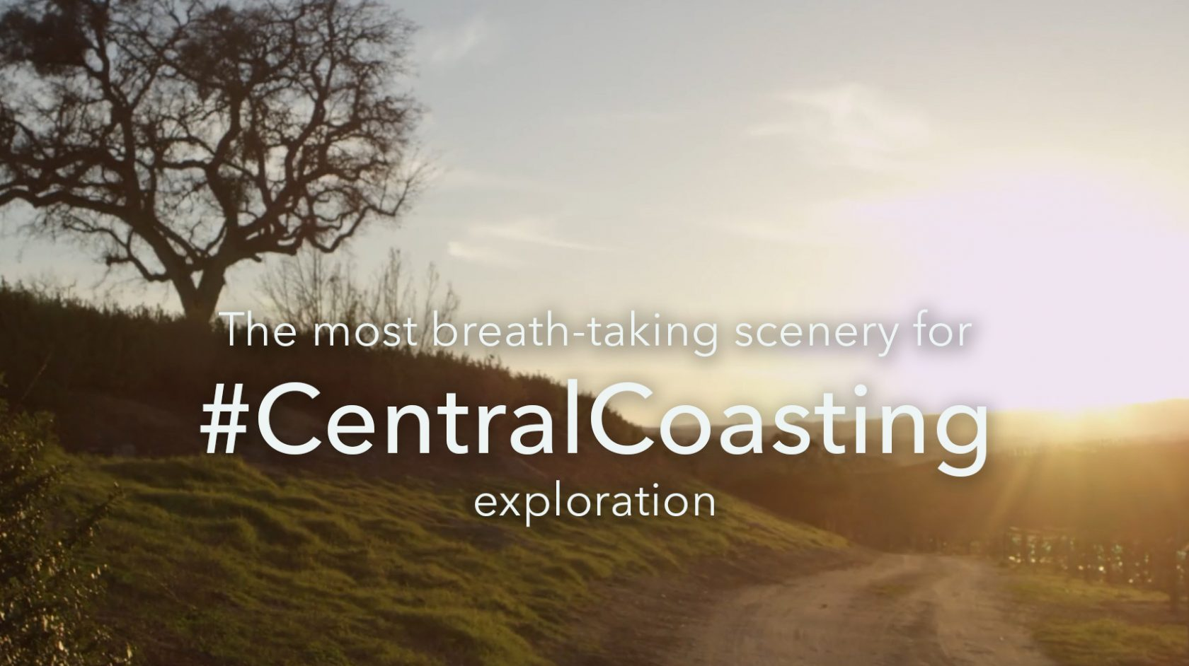 Central Coasting Exploration with beautiful scenery