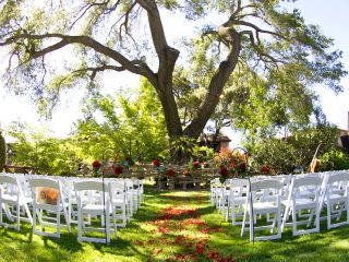 Wedding Ceremony under beautiful oak tree at Paso Robles Inn