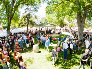 Wine Festival in Paso Robles Wine Country